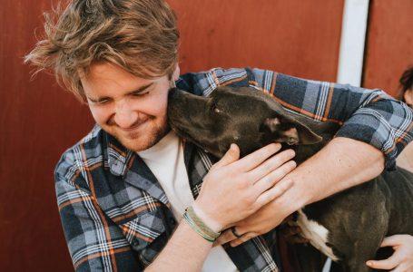 Comment se faire aimer par son chien ?