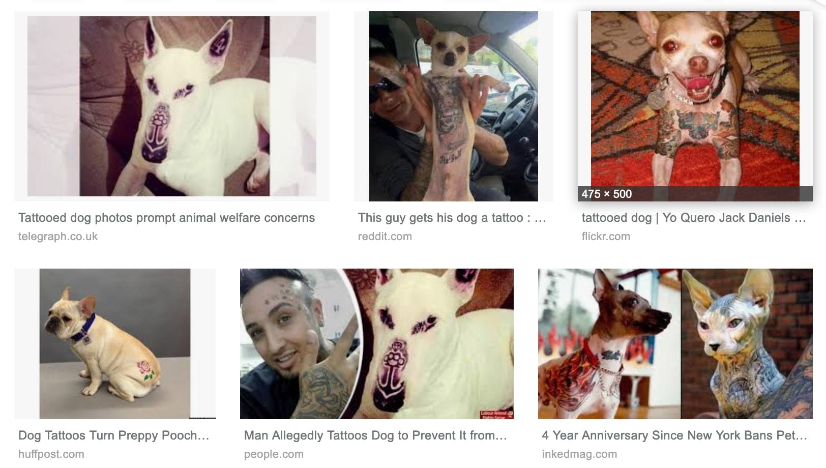 tatouage-chien